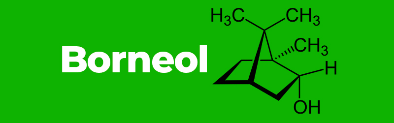 Chemical structure of the terpene Borneol. terpene facts. Buy vapes online UK.