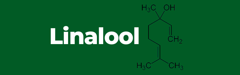 Chemical structure of the terpene Linalool. hemp terpenes benefits. Buy CBD vapes online UK.