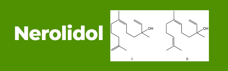 Chemical structure of the terpene Nerolidol. Buy hemp oil uk.