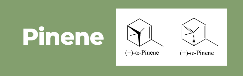 Chemical structure of the terpene Pinene. Buy CBD vape cartridges online in UK.